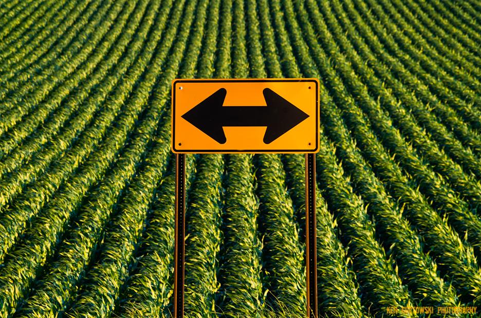 IMG6463_this_way.jpg